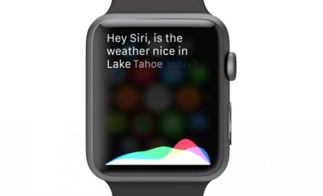 siri-apple-watch